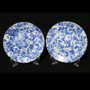 Royal Devonshire Blue Meadow 2pc Side Plate Set